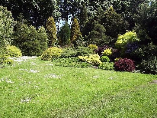 На снимке изображен ботанический сад города Каунаса