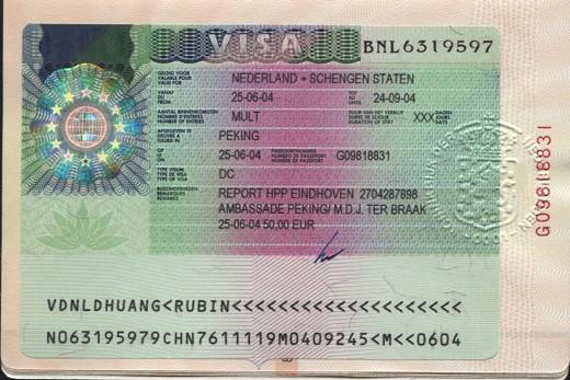 Оформляют визу типа D или DC, которая позволяет учиться и работать на территории страны