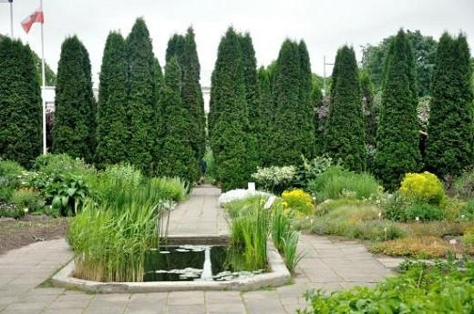 На фото представлен небольшой участок Ботанического сада Тартурского университета