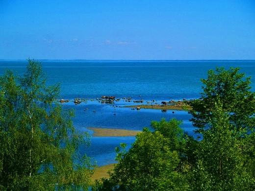 На фотографии остров Муху в Эстонии